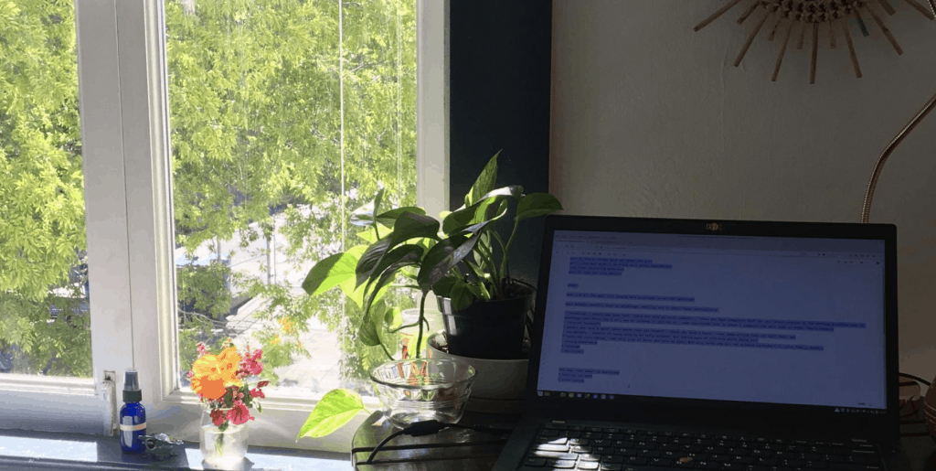 desk in front of window looking out on street scene with a laptop and a plant