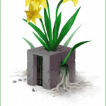 A large daffodil grows out of a concrete block. The block is a prison cell with metal bars. The daffodil's stem, leaves and roots are breaking through the block and causing cracks. Text reads: Imagining long-term solutions to violence, including sexual harassment, is part of a larger abolitionist project to foster community-wide changes instead of distributing individual punishments.