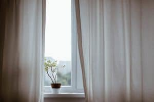 window with white curtains slightly open revealing a plant on the windowsill