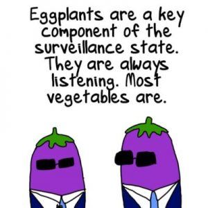 Cartoon of two eggplants in suits and sunglasses. Text reads 'Eggplants are a key component of the surveillance state. They are always listening. Most vegetables are.'