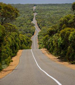 remote road surrounded by Australian bush on Kangaroo island