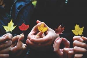 Close up photo of three hands holding small autumn leaves.